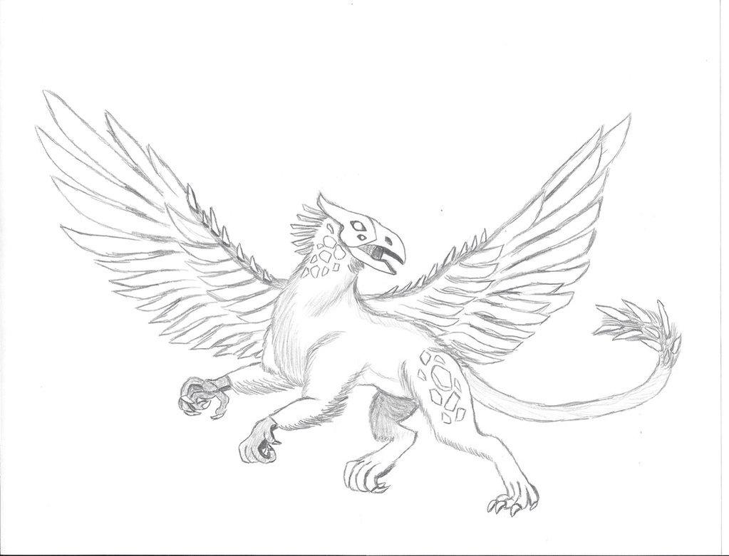 Drawn griffon Grimm by Grimm on Griffon