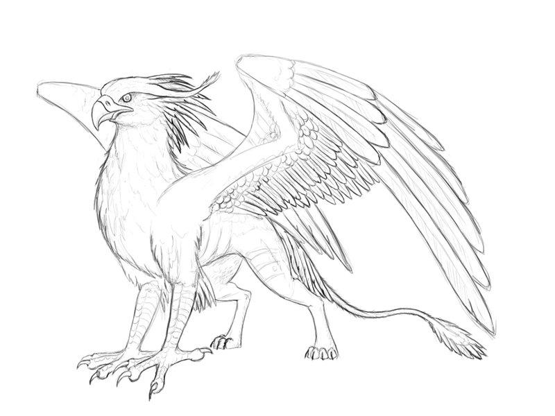 Drawn griffon Pinterest Izora Beast3 61 gryphon