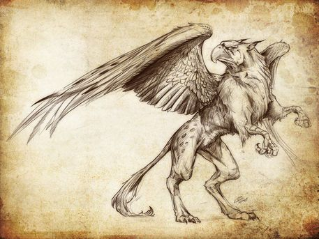 Drawn griffon gryphon Griffon on images Griffin Pin