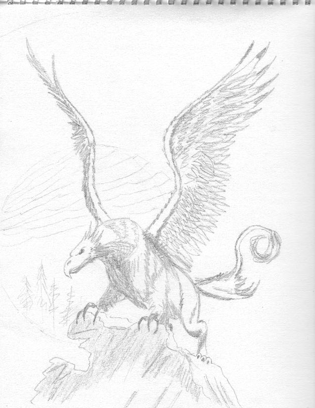 Drawn griffon magical creature Additional of believed able people