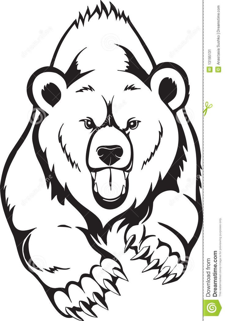Drawn grizzly bear Bear tattoos Pinterest Animals Best