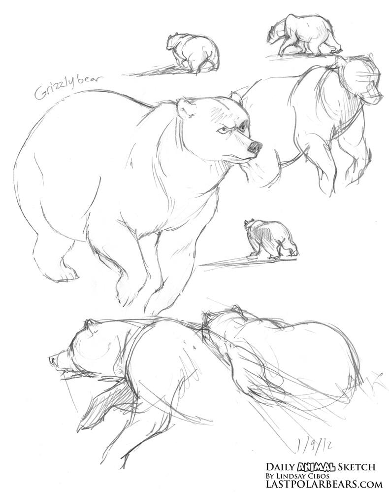 Drawn polar  bear running bear #1