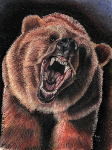 Drawn grizzly bear awesome Charcoal pastel drawing goal pastel
