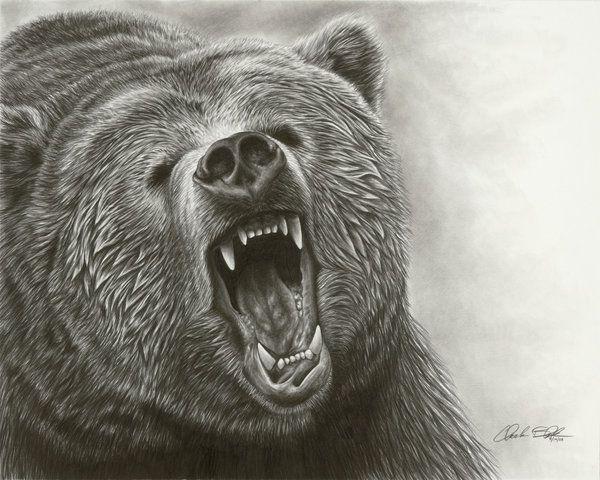 Drawn grizzly bear awesome II @deviantART ROAR by com
