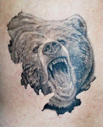 Drawn grizzly bear bear head Pinterest Examples Head Bear Pix