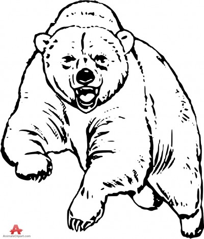 Teddy clipart grizzly bear Black bear white and grizzly