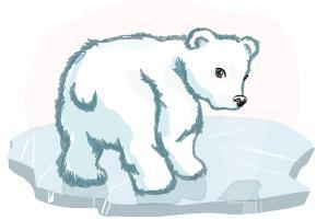 Drawn polar  bear adorable baby How DrawingNow Grizzly Polar Bear