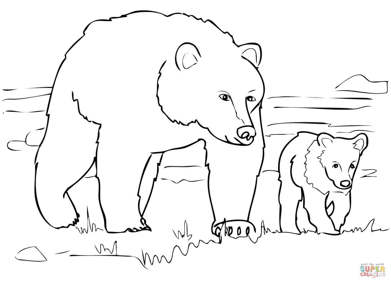 Drawn polar  bear family drawing Coloring Family to Bear Bear