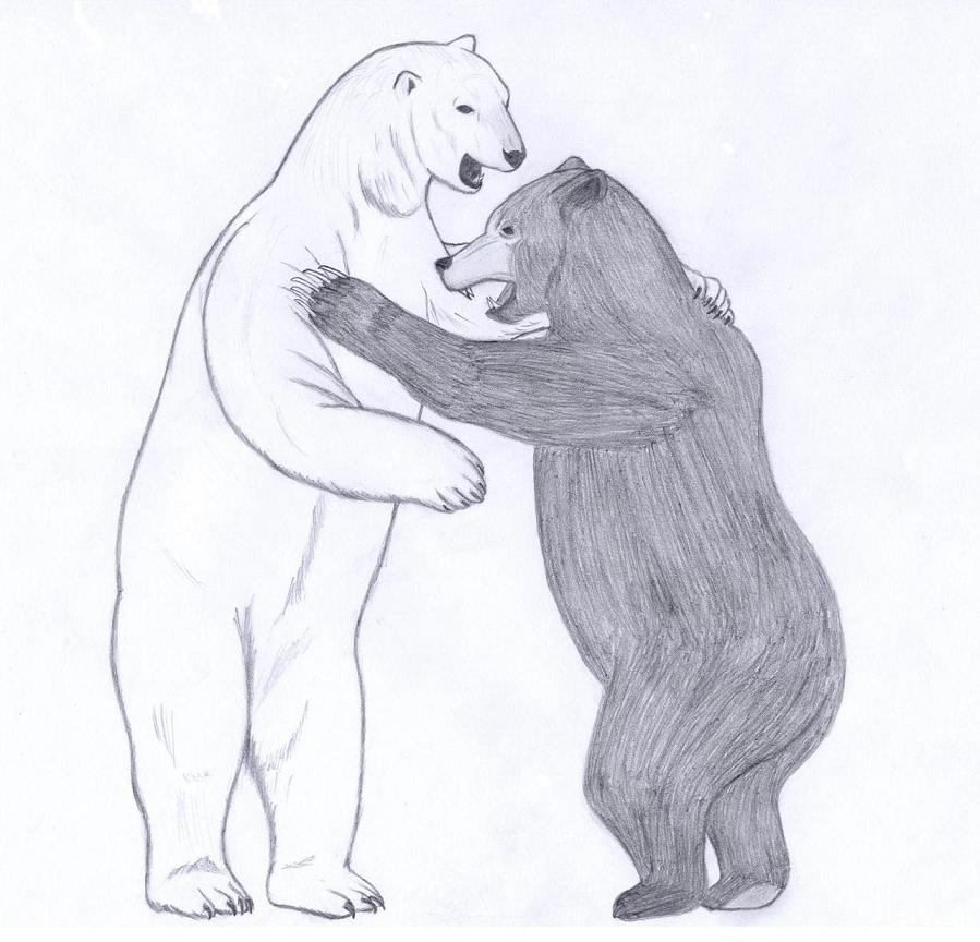 Drawn polar  bear deviantart Bear Designs Ink Grizzly Joe09Art