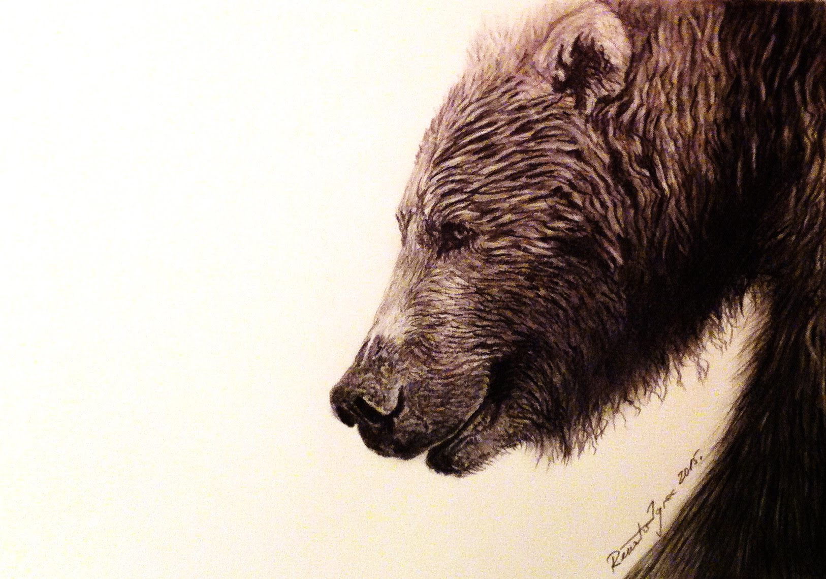 Drawn grizzly bear pencil drawing Bear Hand2 Draw drawing The