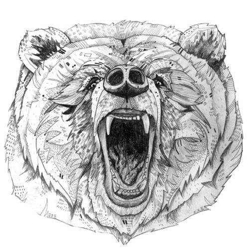 Drawn grizzly bear roar Bear Tattoos illustration bear illustration