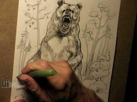 Drawn grizzly bear roar  Roaring YouTube Big a