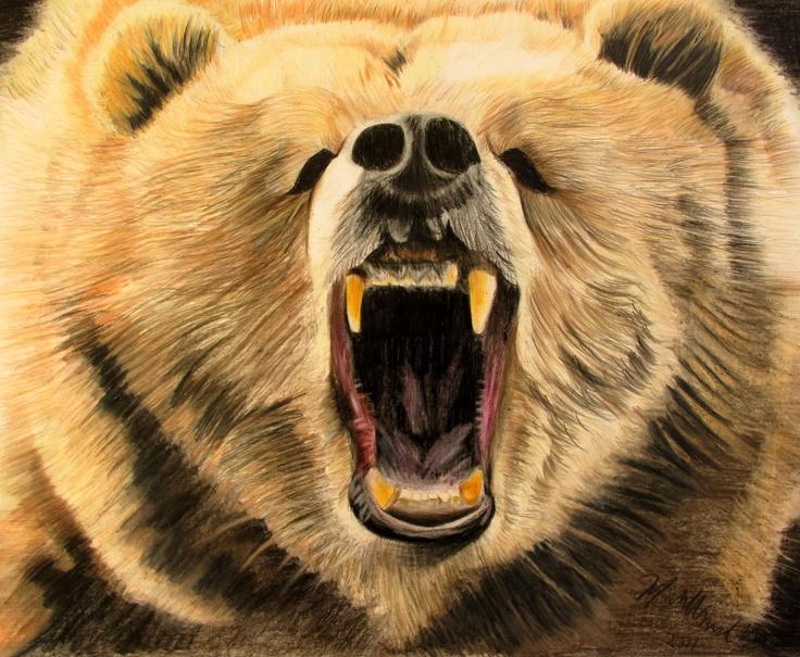 Drawn grizzly bear roar Grizzly Grizzly Roar Wallpaper Roar