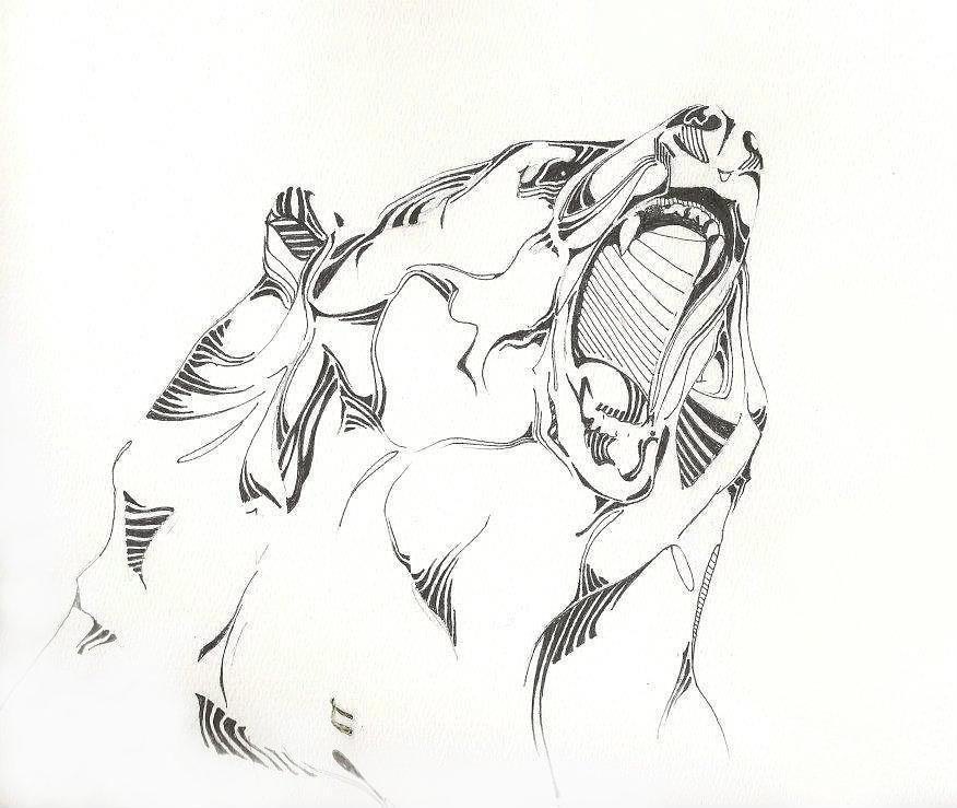 Drawn grizzly bear hand drawn Roaring Bear Growling Drawing Drawing