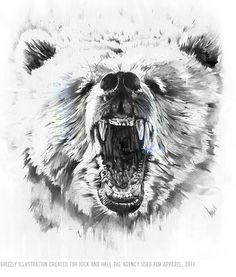 Drawn grizzly bear roar On Alexis  Bear Back