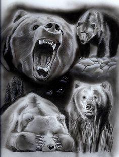 Drawn rabbid bear Google inside shoulder Bears a
