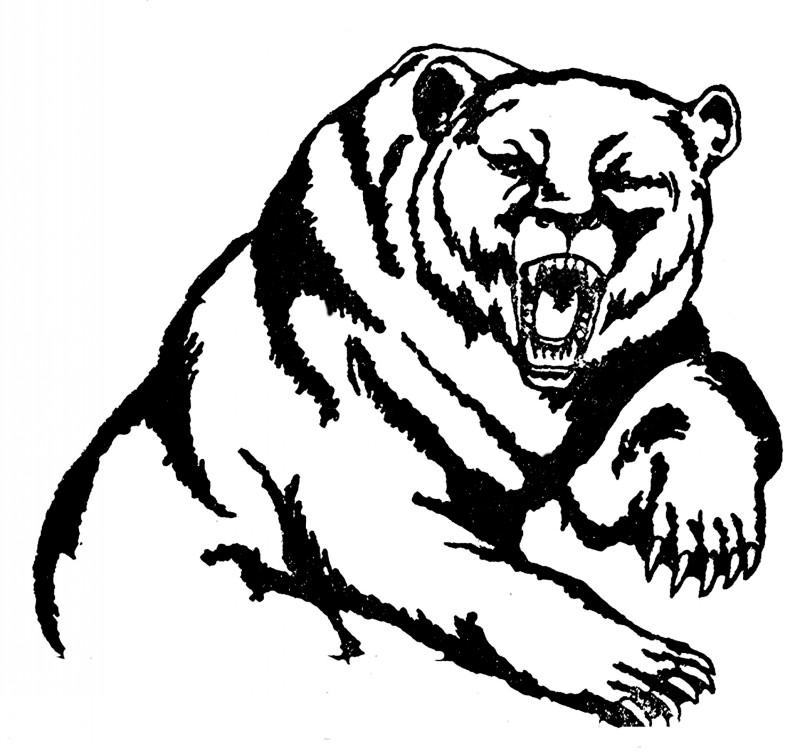 Drawn grizzly bear hand drawn Grizzly bear Tattooimages tattoo tattoo