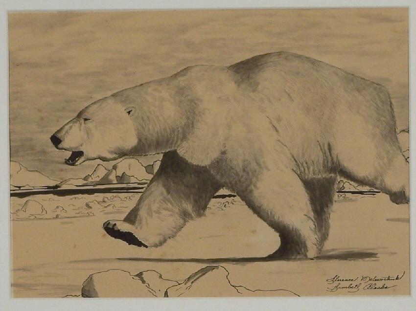 Drawn polar  bear running bear Malewotkuk D 9 inches drawing