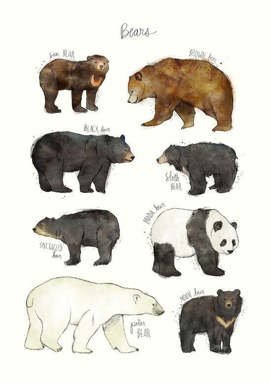 Furry clipart monster creature The Bear Pinterest Art Print
