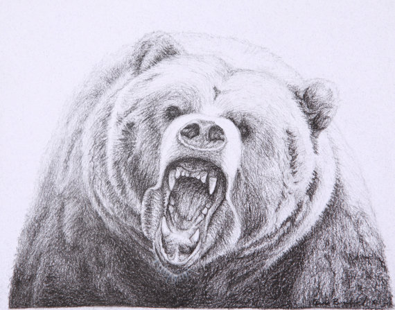 Drawn grizzly bear sketch Bear Bear bear Grizzly charcoal