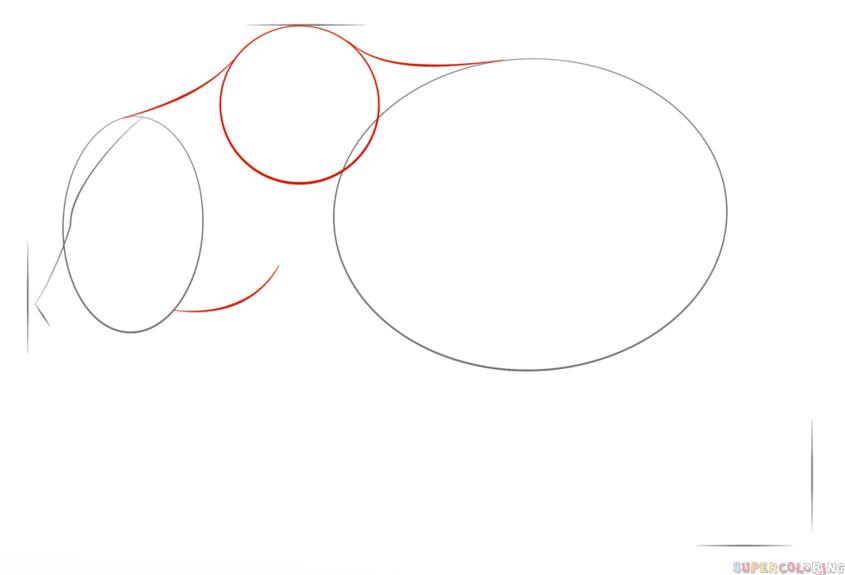 Drawn grizzly bear step by step Step tutorials Bear  by