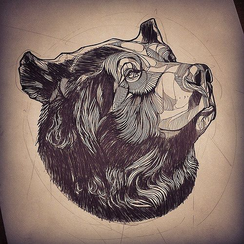 Drawn grizzly bear strong Drawing ideas on Bear 25+