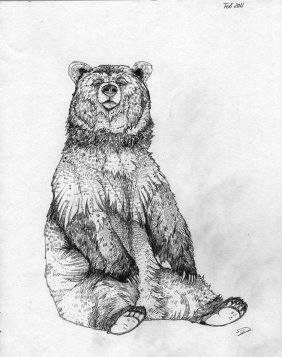 Drawn grizzly bear strong On Pinterest Grizzly Google zoeken