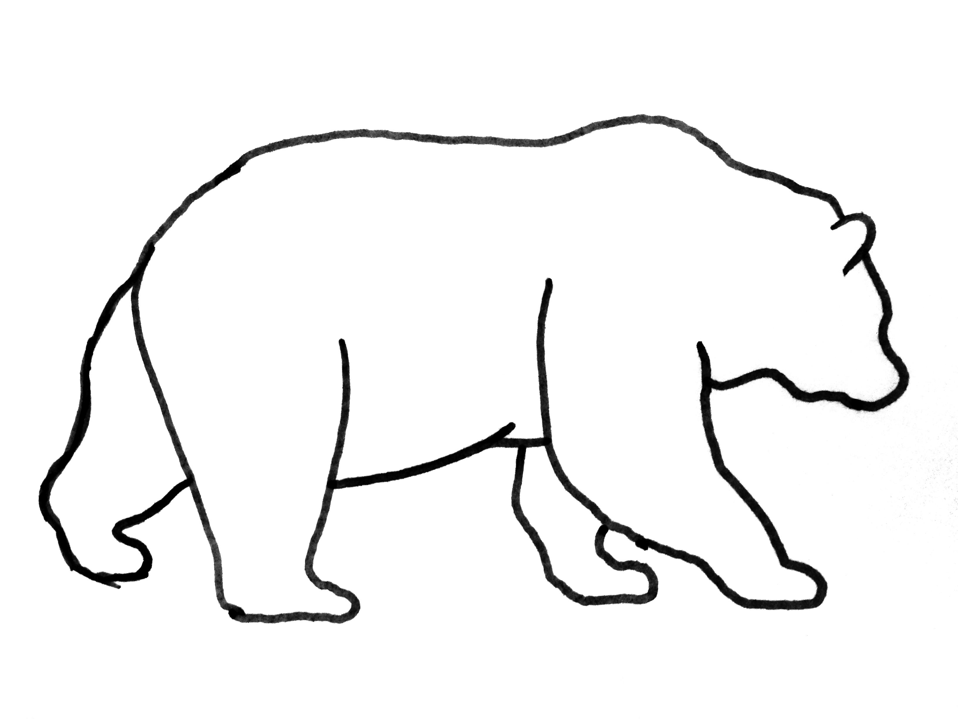 Drawn grizzly bear strong To the It's the even