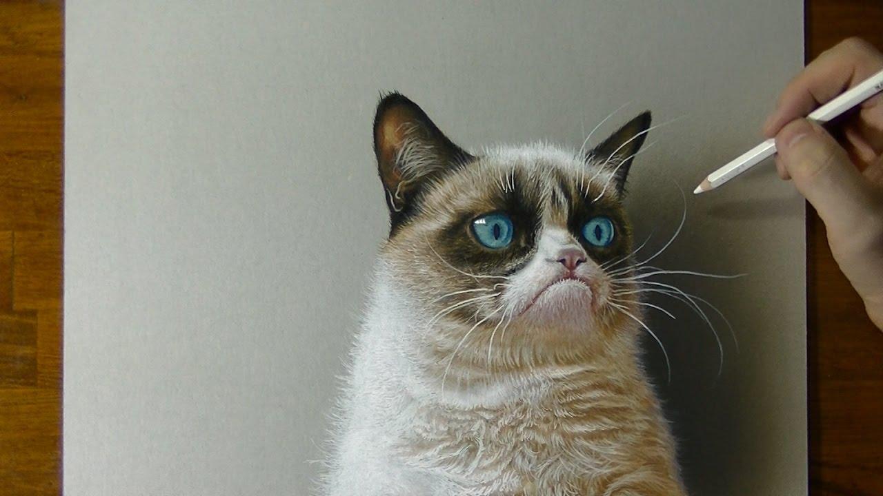Drawn grumpy cat 3D Drawing Portrait Grumpy 3D