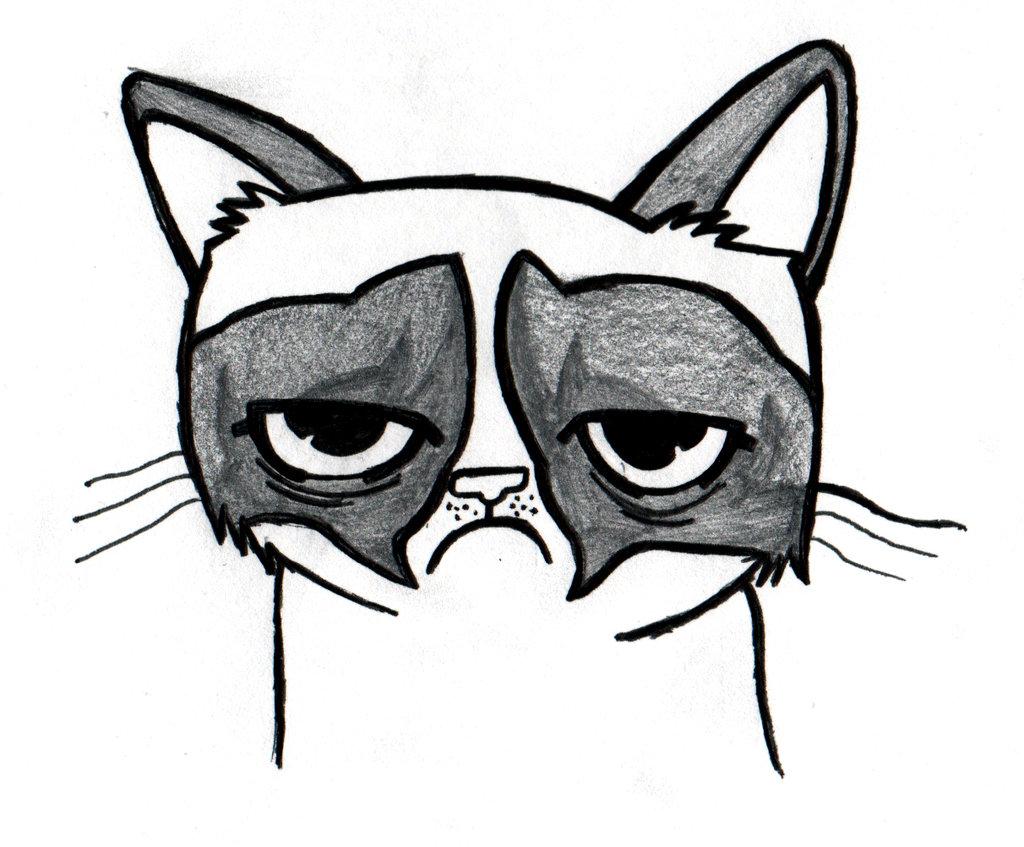 Drawn grumpy cat Cat Tardar real name a