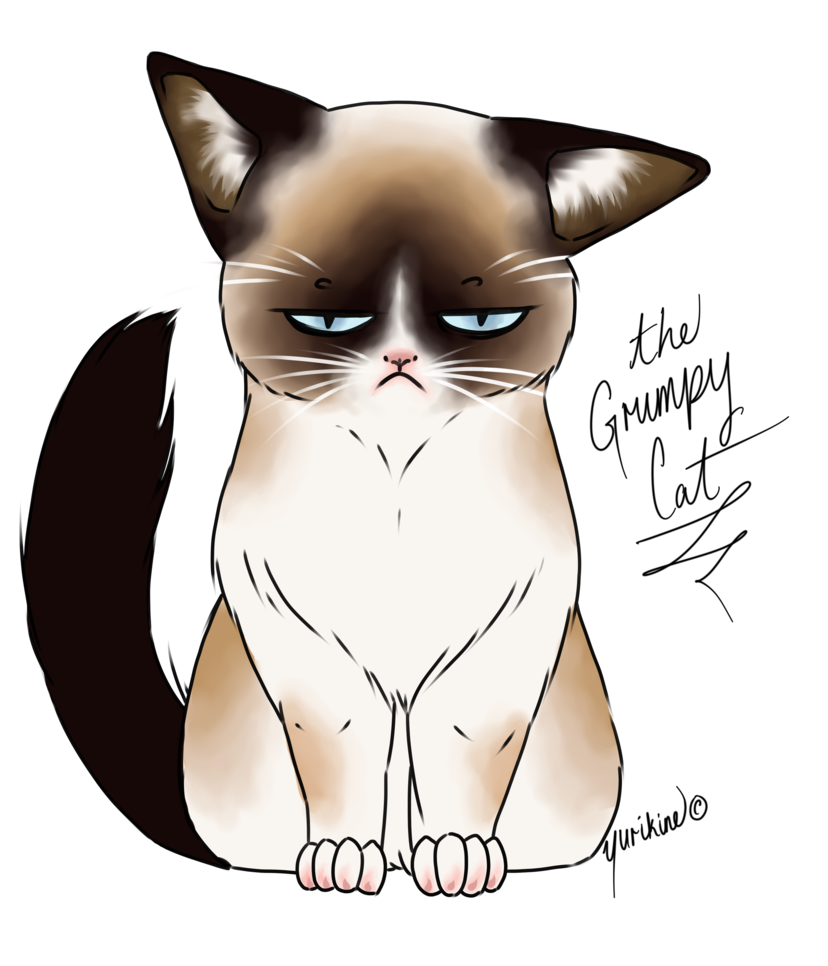 Drawn grumpy cat digital Yurikine on Grumpy Cat by