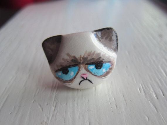 Drawn grumpy cat polymer clay Pinterest  images on DIY
