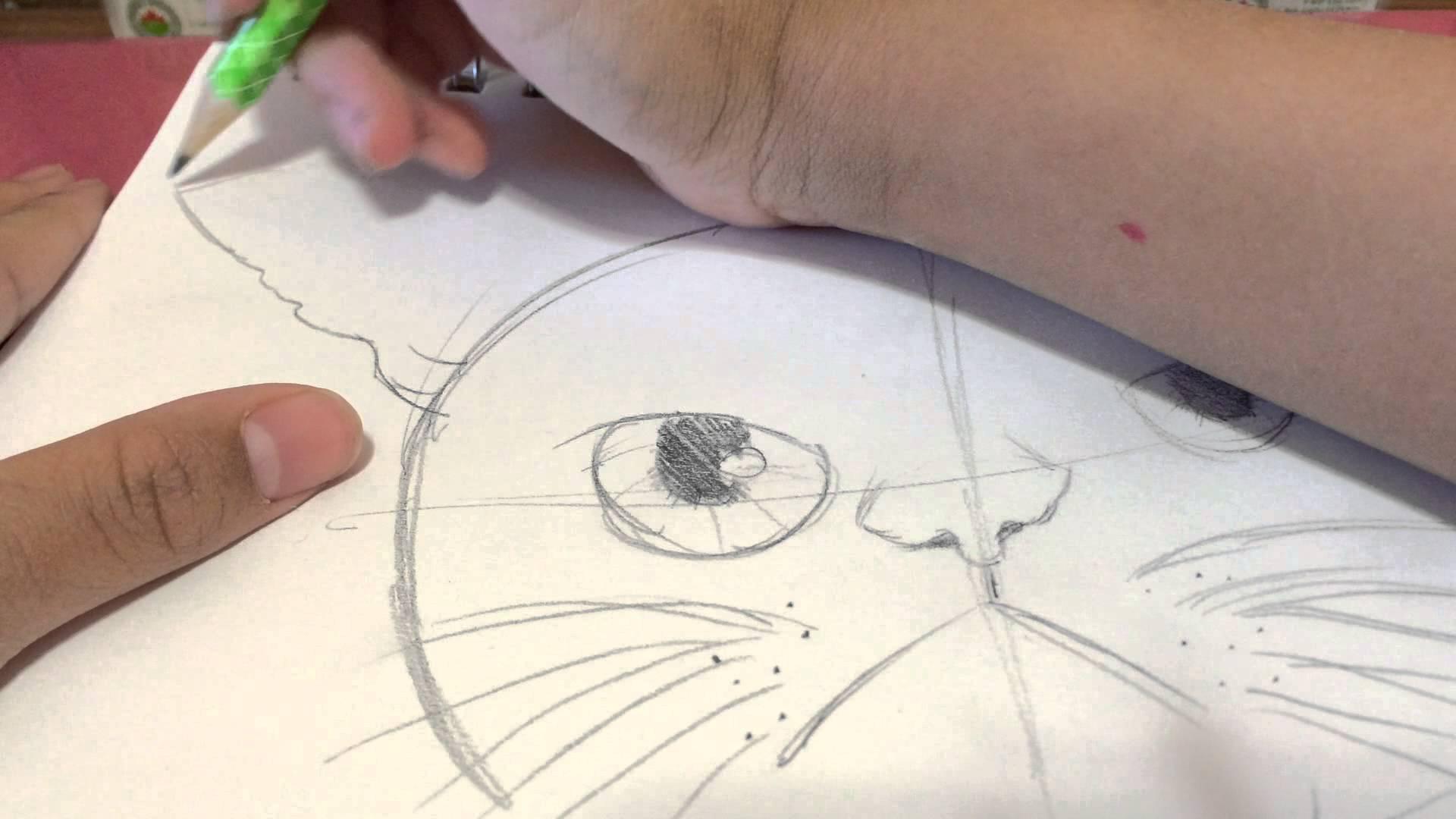 Drawn grumpy cat polymer clay To How cat grumpy draw