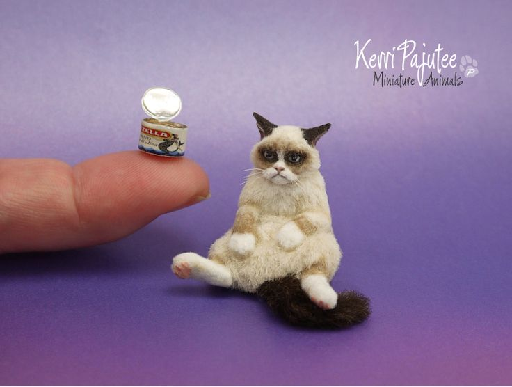 Drawn grumpy cat polymer clay Art Grumpy best Find more