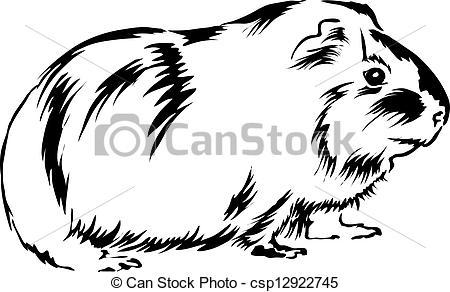 Drawn guinea pig clipart Clip Guinea Pig Image Art
