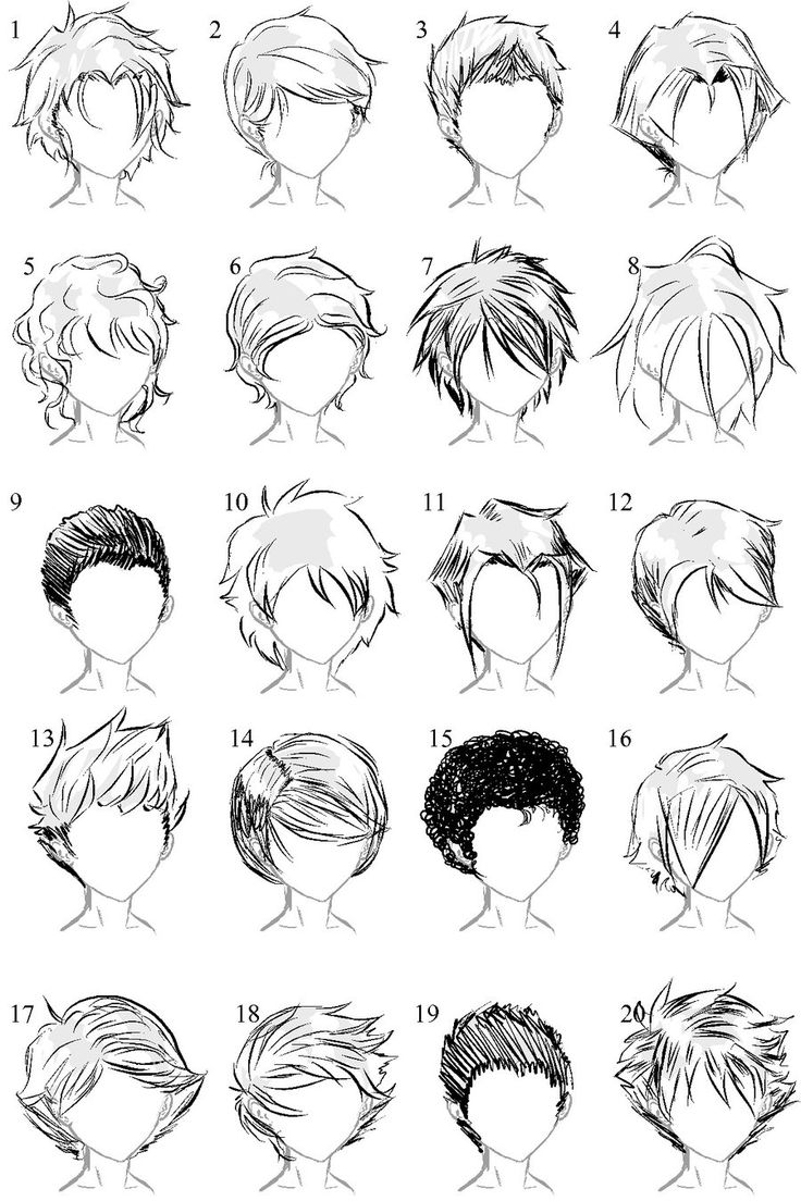 Drawn sloth white background Hair Hairstyle boy Art Drawing