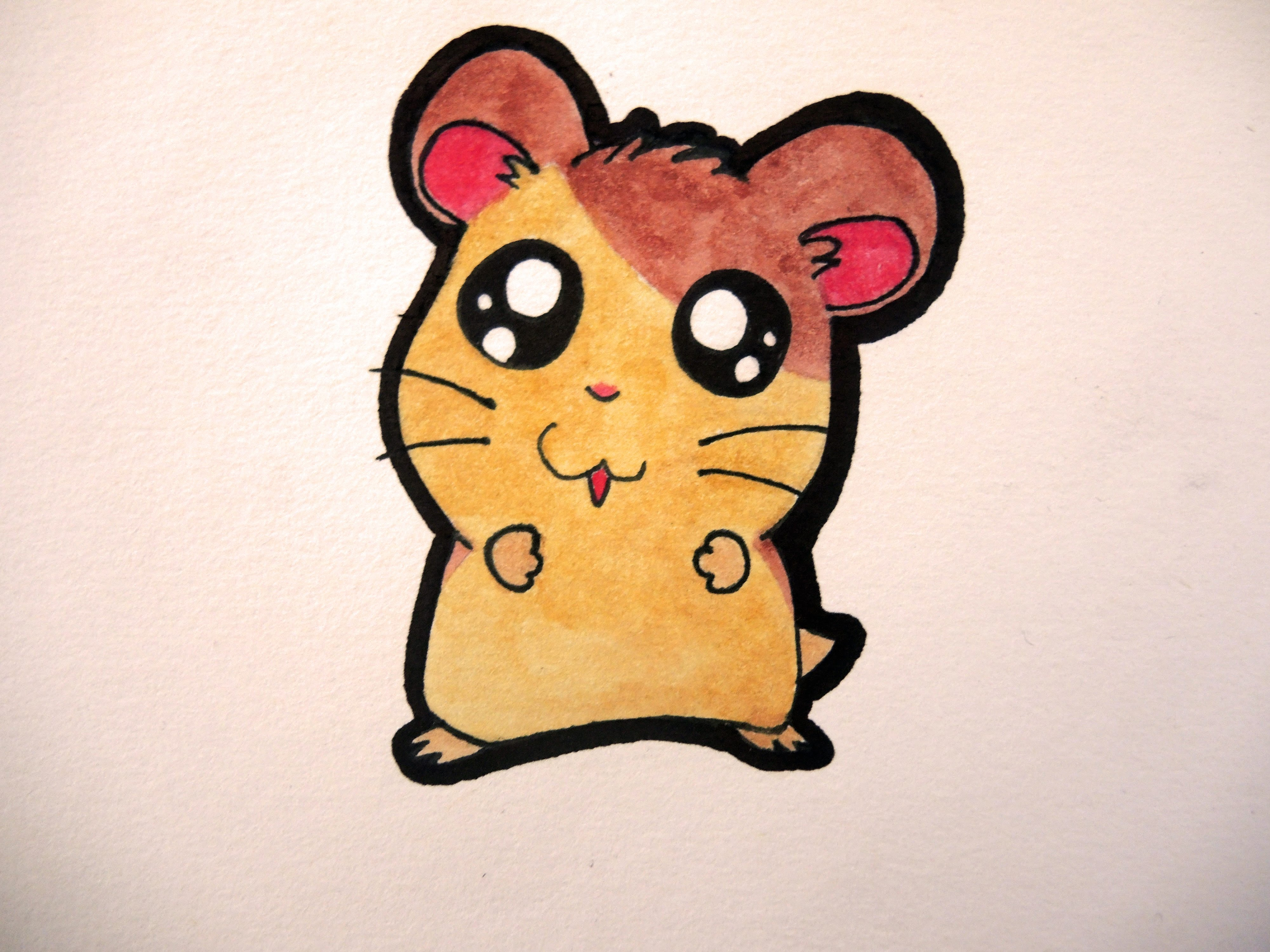 Drawn hamster Cute How (Hamtaro) a to