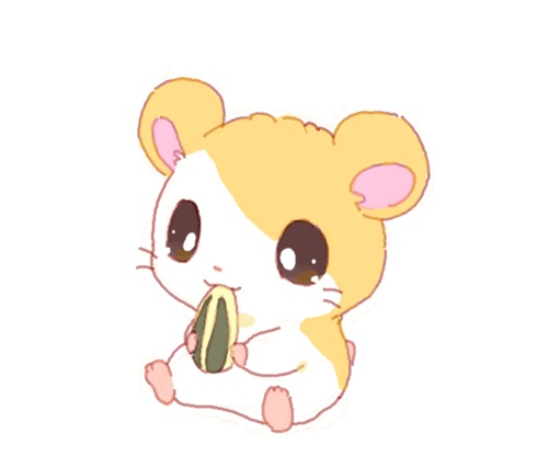 Drawn hamster cartoon Pinterest hamster Ideas :3 Little