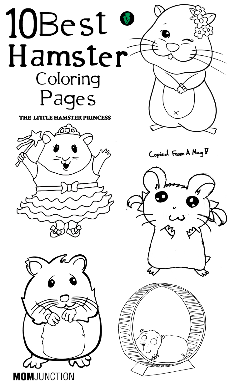 Drawn hamster coloring page Hamster Online Pages printable Top