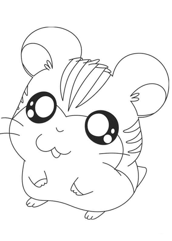 Drawn hamster coloring page Images Hantaro on Hamster Cute