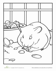 Drawn hamster coloring page Page Coloring Animal coloring Pages