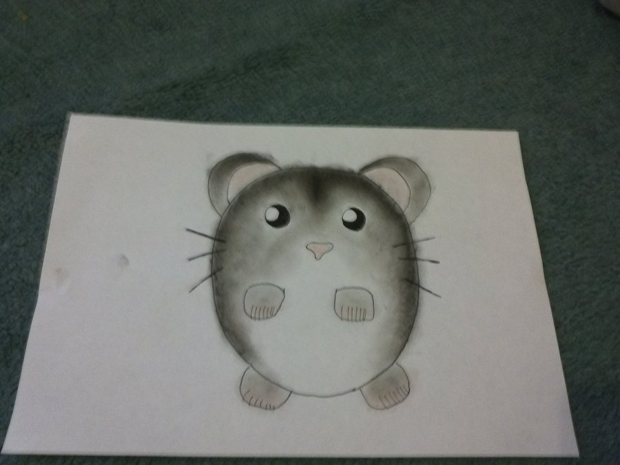 Drawn hamster dwarf hamster Dwarf Drawing Dwarf photo#8 drawing