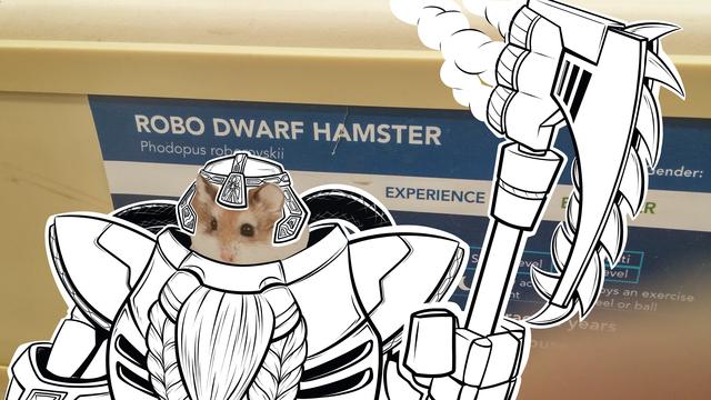 Drawn hamster robo Tumblr Dwarf dwarf Hamster robo