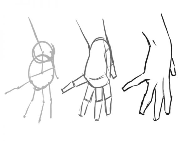 Drawn hand  A Draw Proportioned Structure