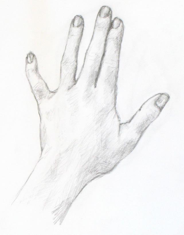Drawn hand Westchester / tutorials demos Portrait