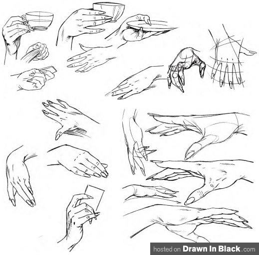 Drawn hand 35  by How Hands