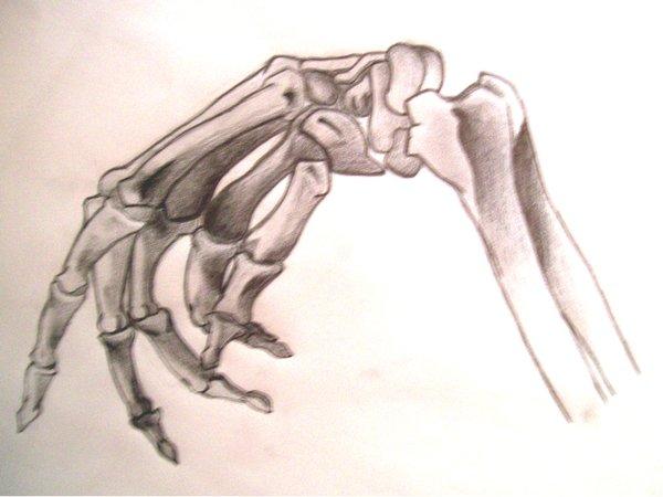 Drawn skeleton hand drawn Tattoo Drawings Tattoo Skeleton Red