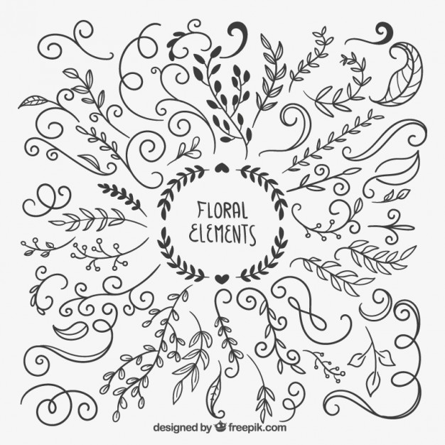 Drawn floral & Hand ~ ~ floral