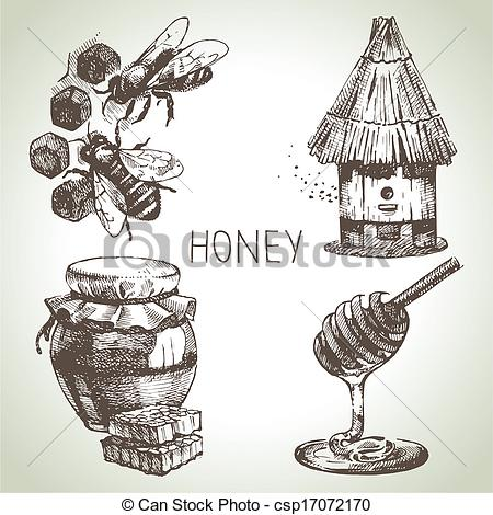 Drawn hand honey Vintage Illustration Honey Hand illustrations