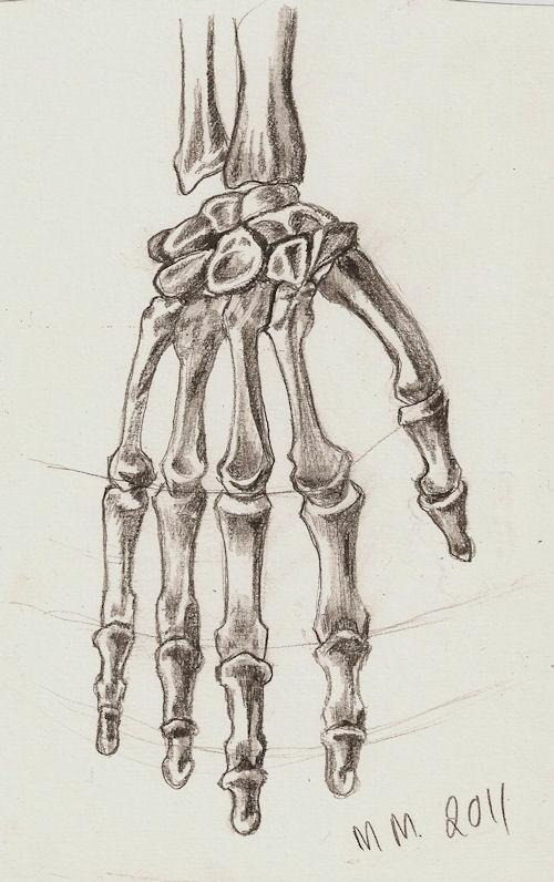Drawn skeleton hand drawn Drawing Skeleton Drawings Hand Skeleton